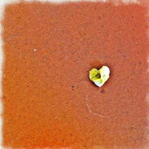 #19 Il cuore d'oro: così perfetto, così leggero, è volato con un soffio in odor di cioccolato...
