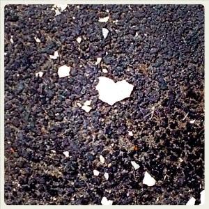 #20 Crosta di muoro, cuore bello o ali di pipistrello?
